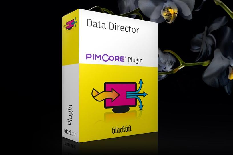 pimcore Data Director 2.5.0
