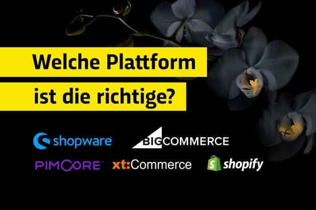 Welche E-Commerce-Plattform oder welcher Online-Shop ist der richtige?